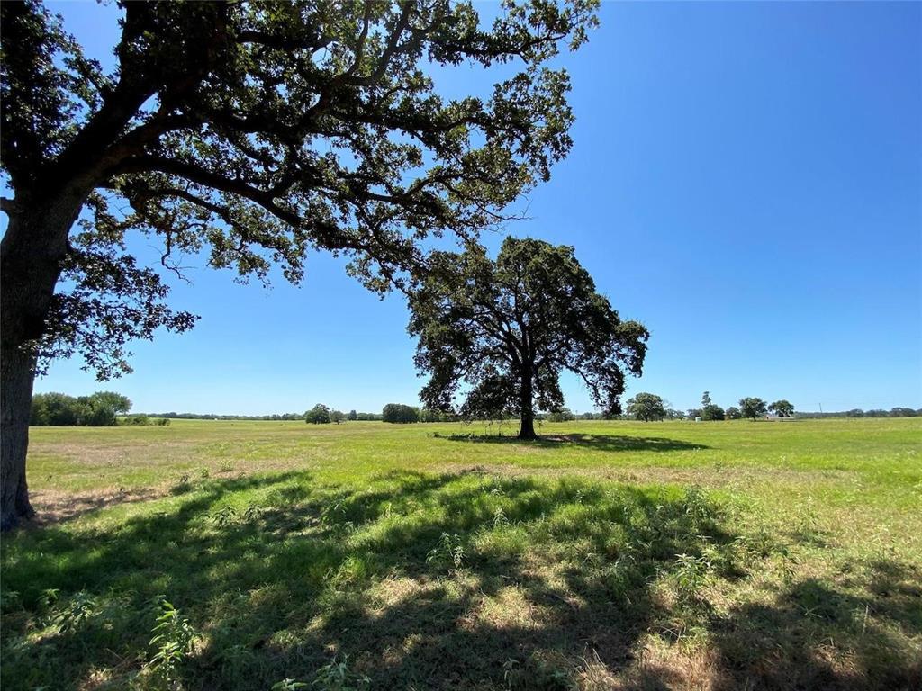 150acre FM269  Pickton, Texas 75471 - Acquisto Real Estate best frisco realtor Amy Gasperini 1031 exchange expert