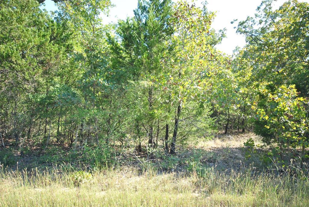 00 Lakeshore  Drive, Jewett, Texas 75846 - Acquisto Real Estate best frisco realtor Amy Gasperini 1031 exchange expert