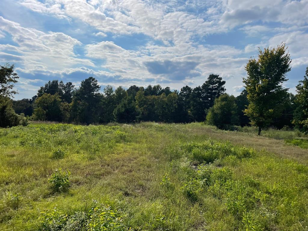 TBD 2.8 Point Pleasant  Road, Gladewater, Texas 75647 - Acquisto Real Estate best frisco realtor Amy Gasperini 1031 exchange expert
