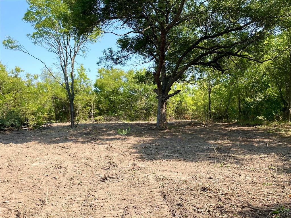 TBD Gray Bottom  Road, Whitewright, Texas 75491 - Acquisto Real Estate best frisco realtor Amy Gasperini 1031 exchange expert