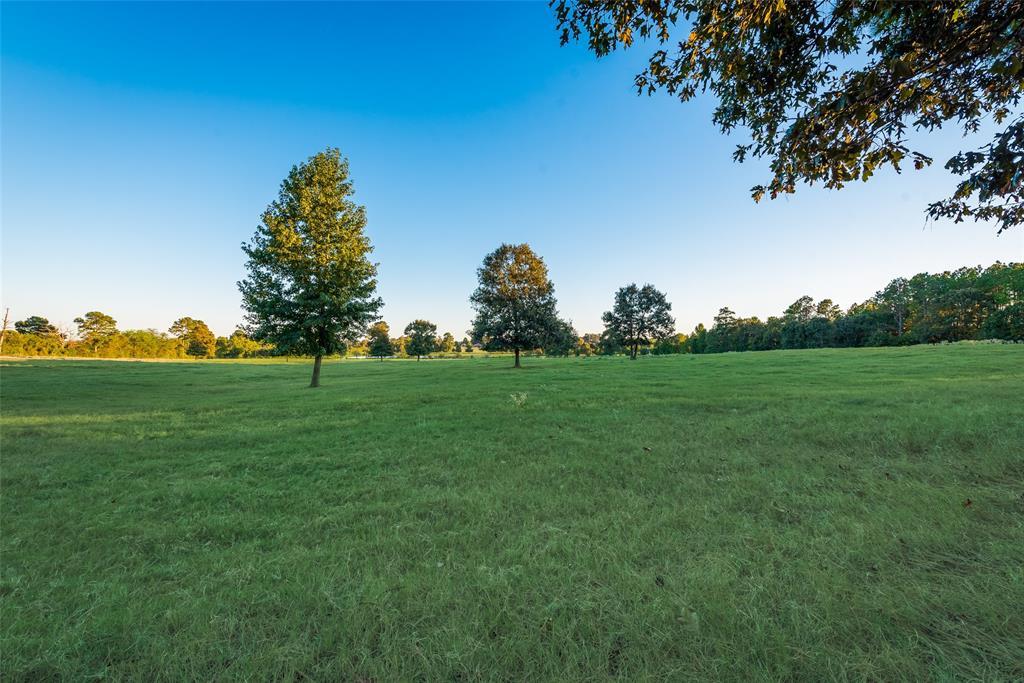 1385 County Road 1612  Alba, Texas 75410 - Acquisto Real Estate best frisco realtor Amy Gasperini 1031 exchange expert