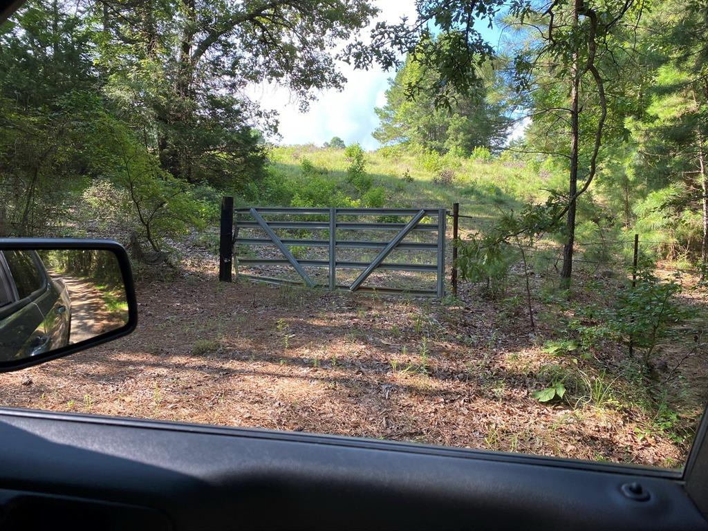 TBD County Road 394  Tatum, Texas 75691 - Acquisto Real Estate best frisco realtor Amy Gasperini 1031 exchange expert