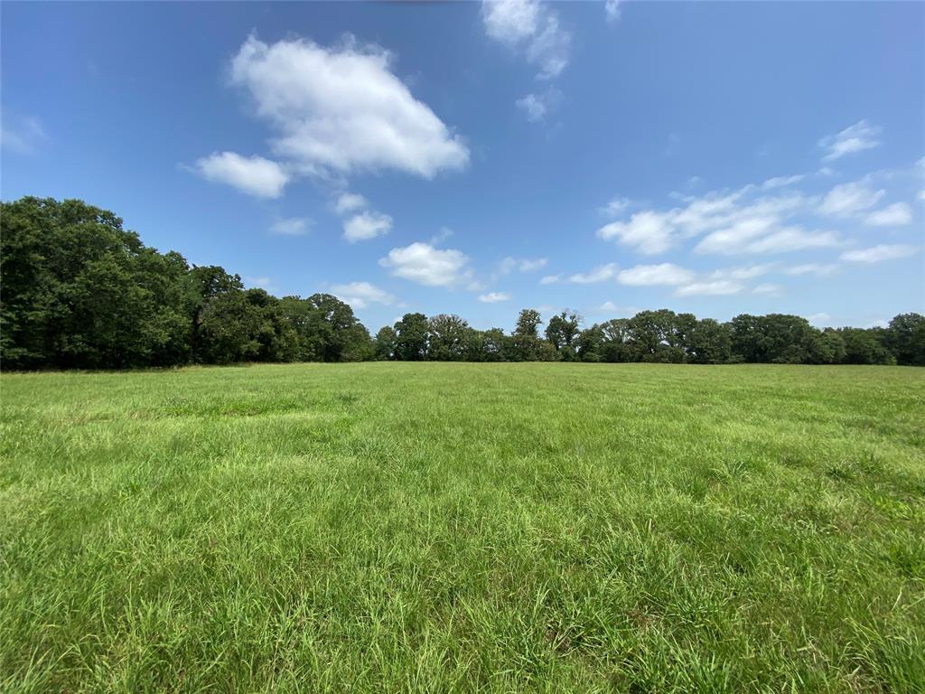 32ac County Road 2425  Pickton, Texas 75471 - Acquisto Real Estate best frisco realtor Amy Gasperini 1031 exchange expert