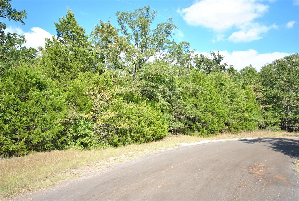 Elm  Drive, Jewett, Texas 75846 - Acquisto Real Estate best frisco realtor Amy Gasperini 1031 exchange expert