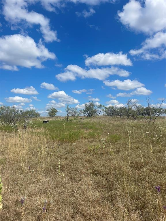 TBD Greenwood  Road, Comanche, Texas 76442 - Acquisto Real Estate best frisco realtor Amy Gasperini 1031 exchange expert