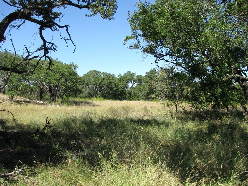 TBD Indian Creek  Road, Evant, Texas 76525 - Acquisto Real Estate best frisco realtor Amy Gasperini 1031 exchange expert