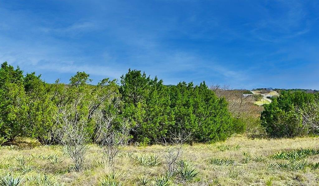 Trk 441 Anglers  Ridge, Bluff Dale, Texas 76433 - Acquisto Real Estate best frisco realtor Amy Gasperini 1031 exchange expert