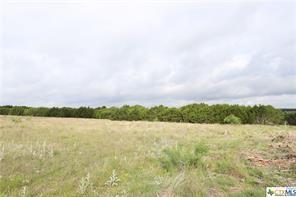 Lot 52 Longview  Drive, Lampasas, Texas 76550 - Acquisto Real Estate best frisco realtor Amy Gasperini 1031 exchange expert