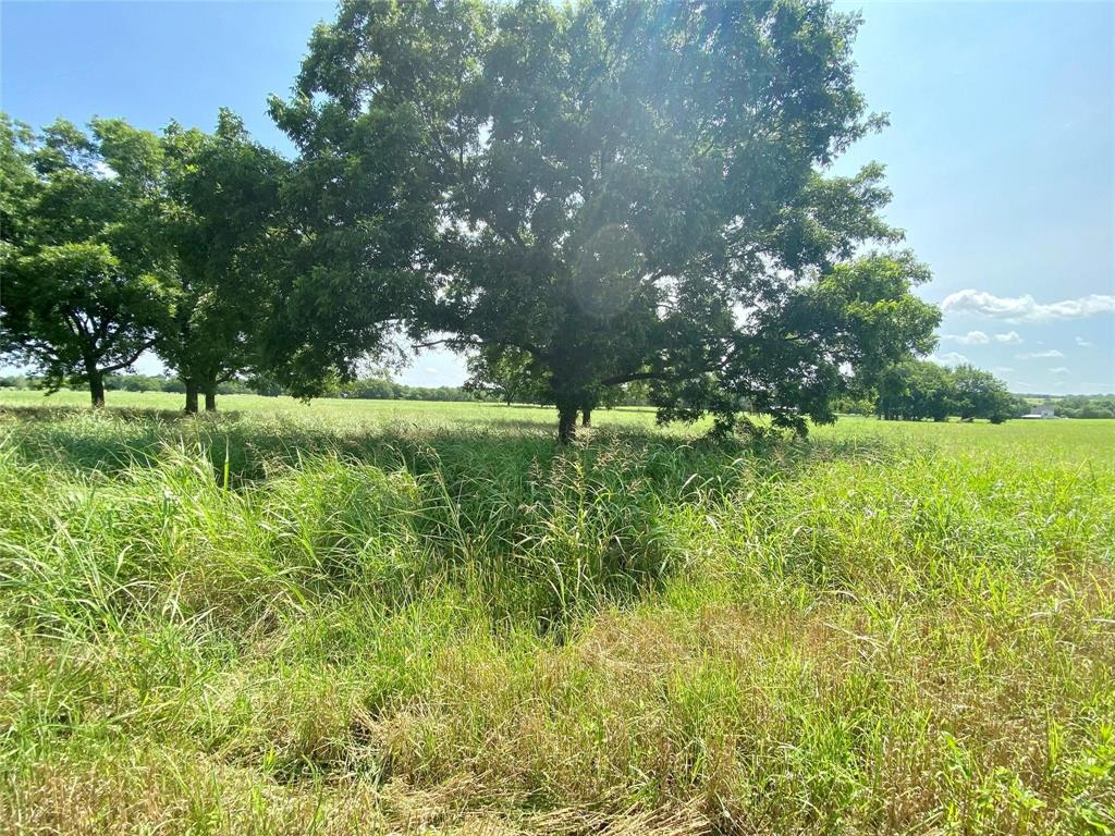 TBD Kara Trail, Lot 1  Van Alstyne, Texas 75495 - Acquisto Real Estate best frisco realtor Amy Gasperini 1031 exchange expert