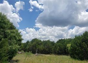 Lot 47 Longview  Drive, Lampasas, Texas 76550 - Acquisto Real Estate best frisco realtor Amy Gasperini 1031 exchange expert