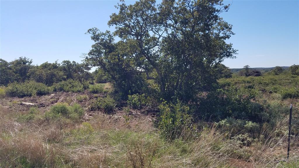 1074 Hidden Shores Drive  Drive, Cisco, Texas 76437 - Acquisto Real Estate best frisco realtor Amy Gasperini 1031 exchange expert
