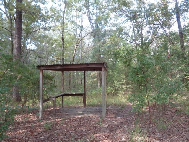 5420 State Hwy 154  Highway, Winnsboro, Texas 75494 - Acquisto Real Estate best frisco realtor Amy Gasperini 1031 exchange expert
