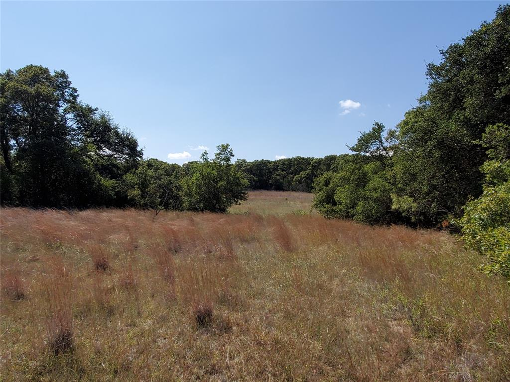 TBD County Rd 135  May, Texas 76857 - Acquisto Real Estate best frisco realtor Amy Gasperini 1031 exchange expert