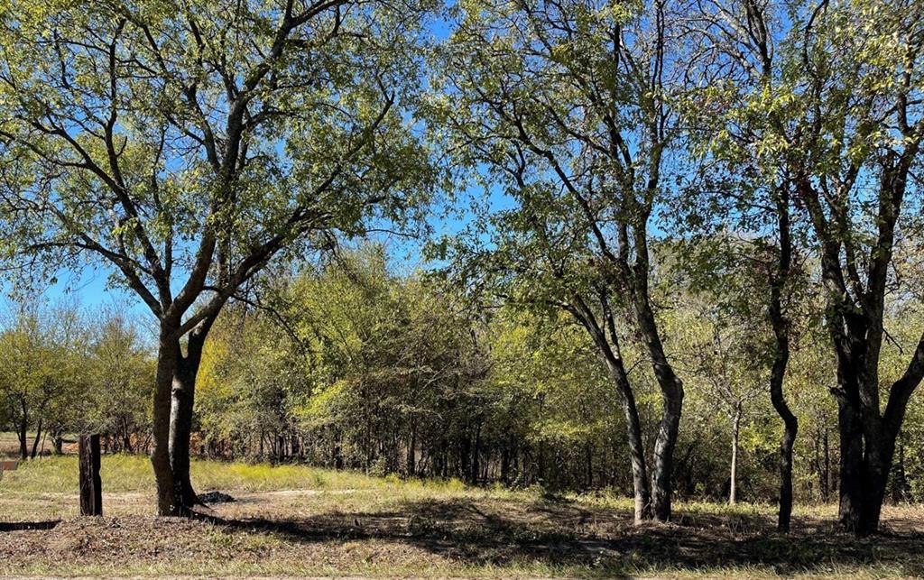 1173 Block  Road, Gunter, Texas 75058 - Acquisto Real Estate best frisco realtor Amy Gasperini 1031 exchange expert